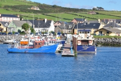 Boats in Dingle 6