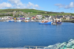Boats in Dingle 7