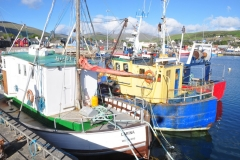 Boats in Dingle 9