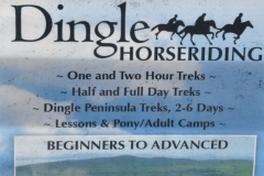 Dingle sign